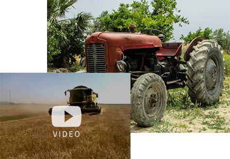 Cooperativa Vallebruna, storia e presente
