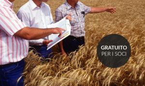 Consulenza agraria Cooperativa Valle Bruna